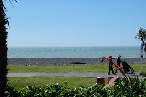 Napier beach from the Sound Shell