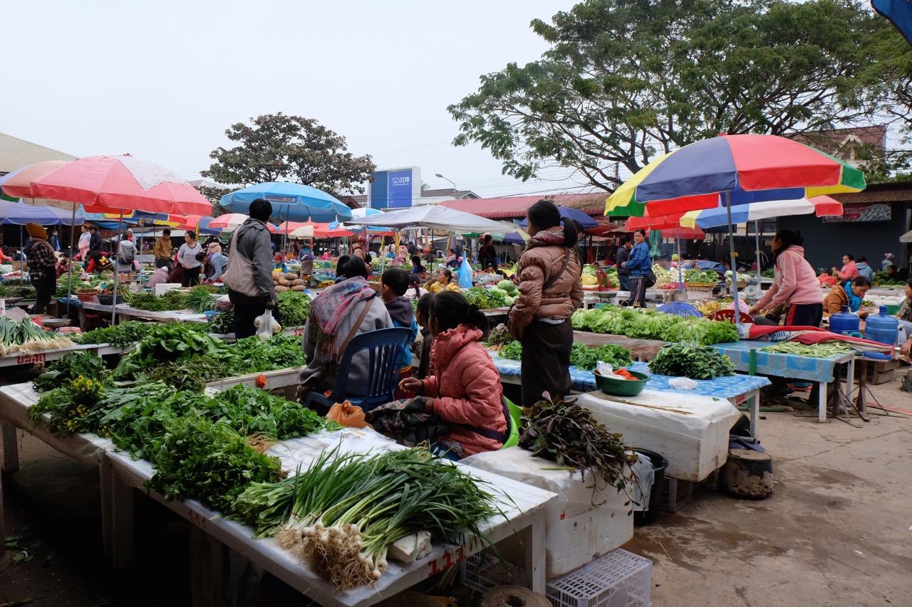 Luang Namtha morning market