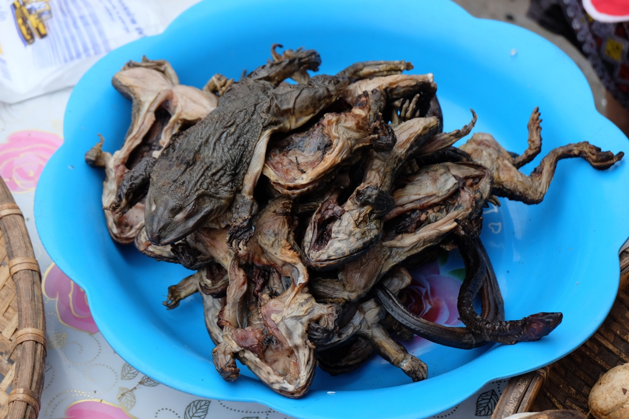 Dried frog at Luang Namtha morning market