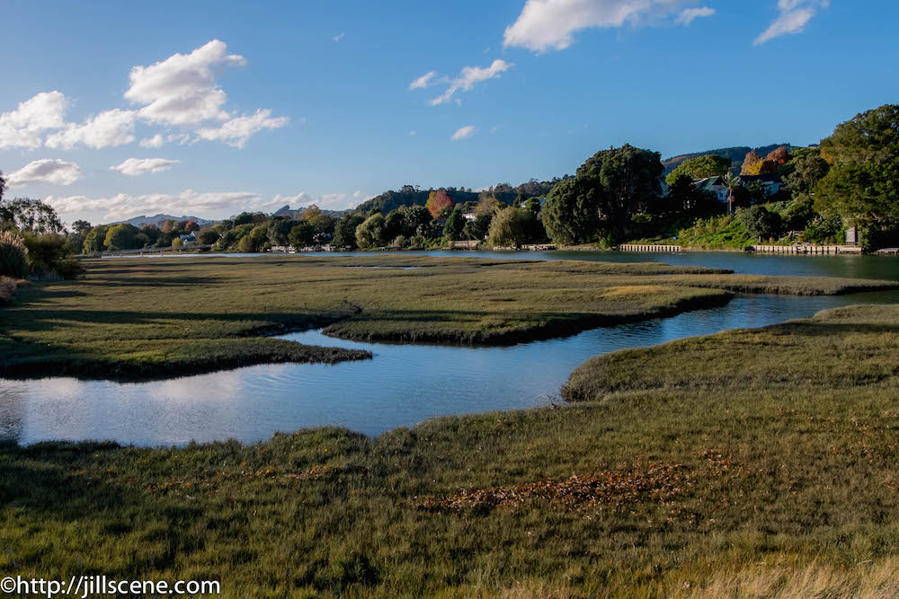 The banks of the Turanganui River