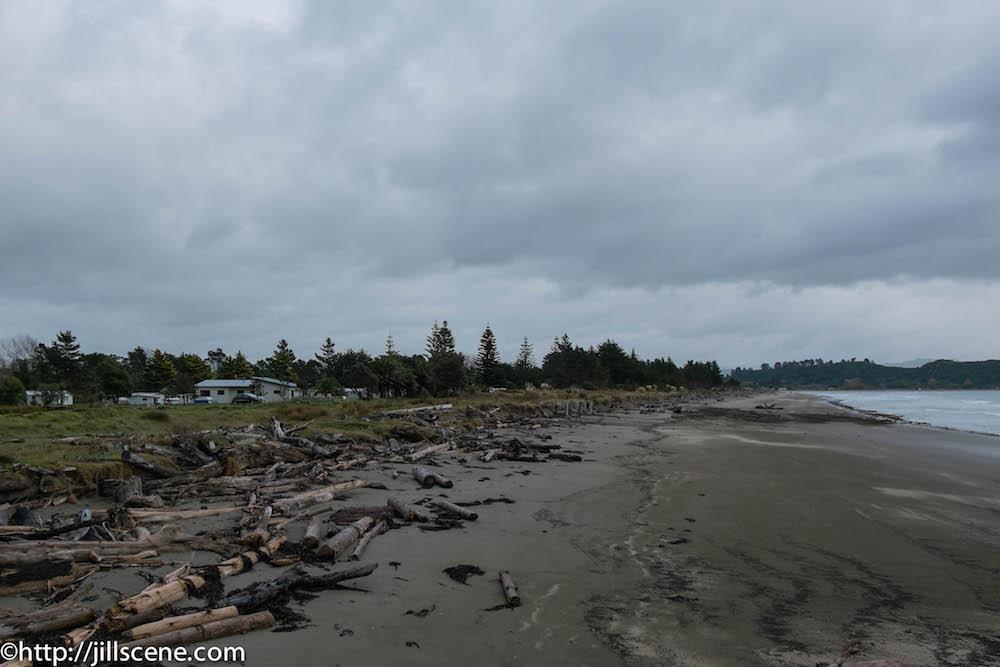 The beach at Tolaga Bay from the wharf