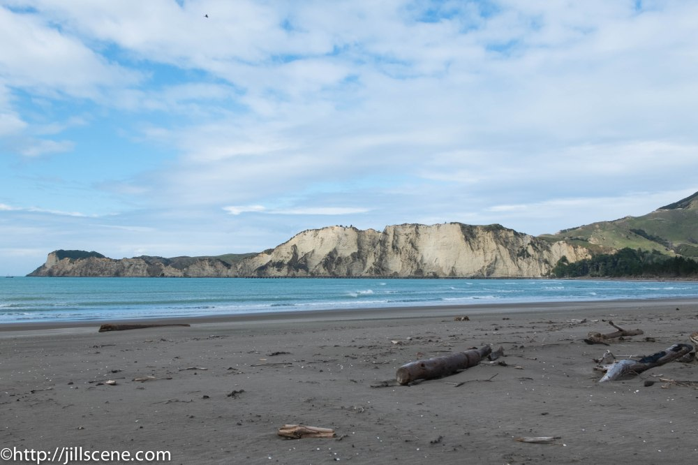 Looking South across Tolaga Bay. Running parallel to the cliffs is Tolaga Bay Wharf.