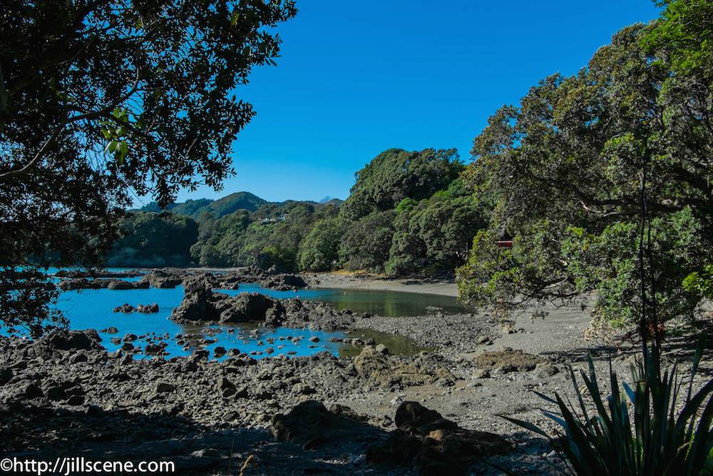 Mid morning at Whanarua Bay