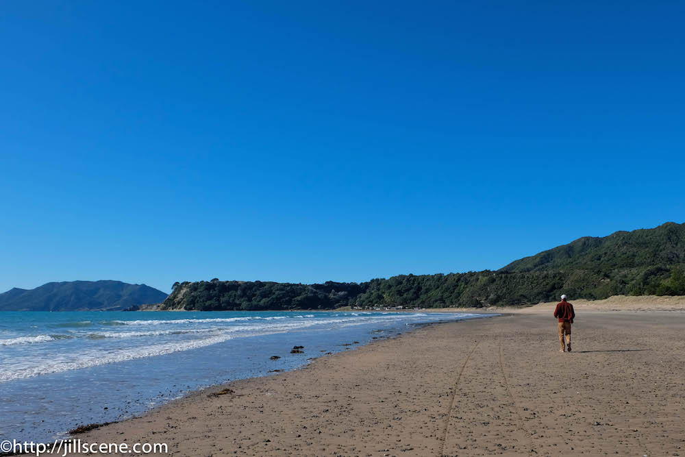 Waihou Bay Beach, looking towards Cape Runaway