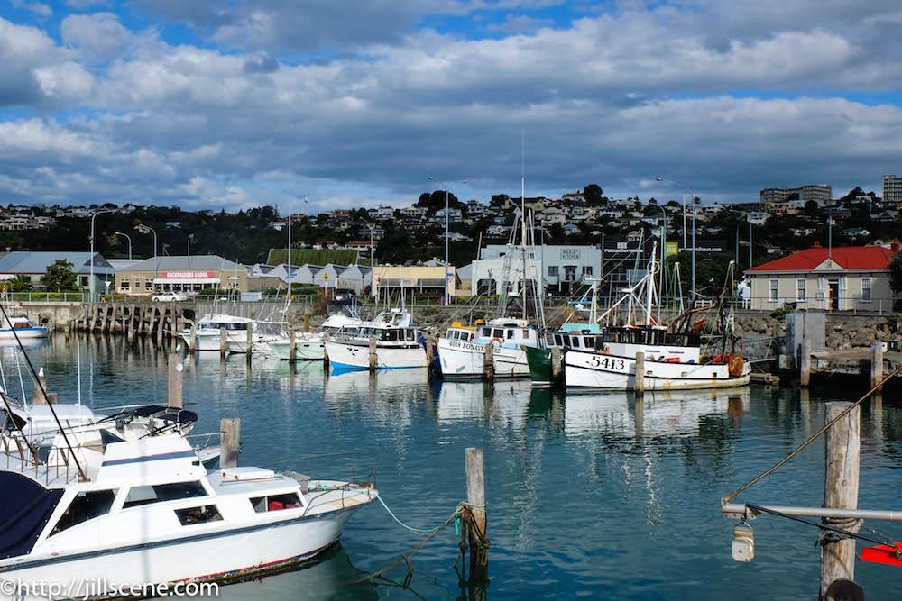 Inner Harbour, Ahuriri, Napier