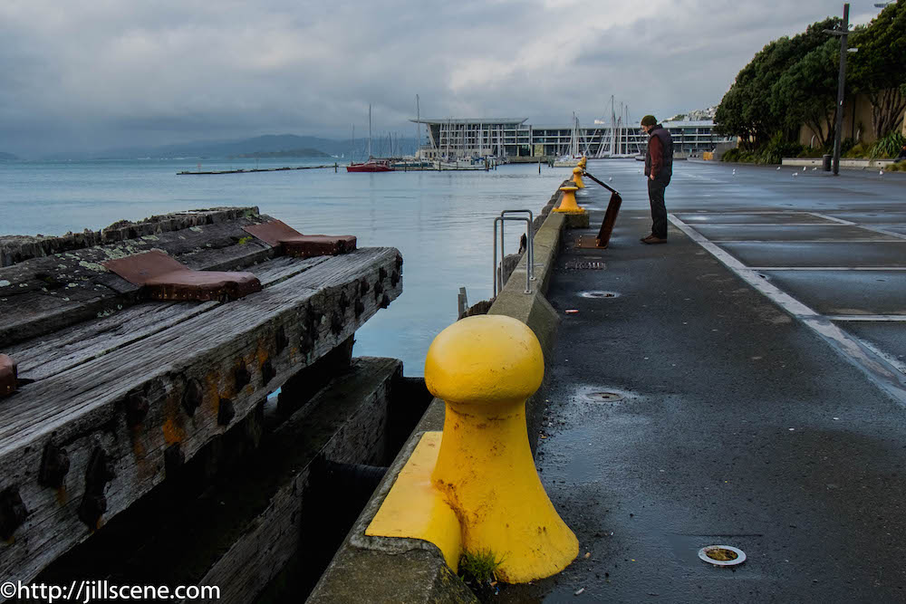 Wellington waterfront on a wild day