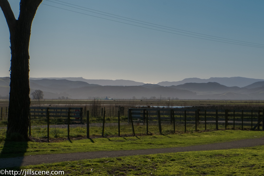 Looking towards Te Waka from the estuary.